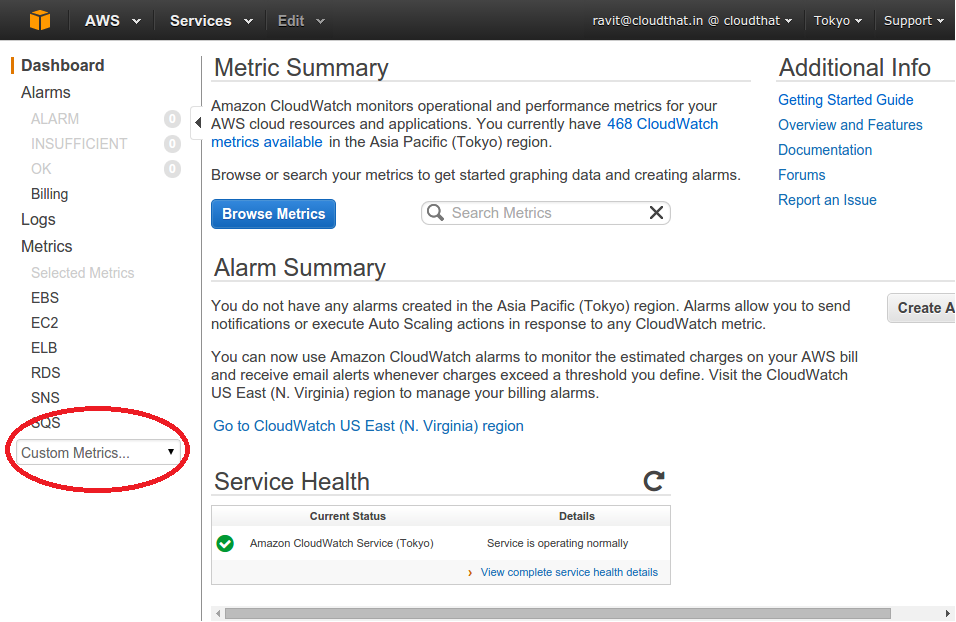 Implementation of Custom Cloudwatch Metric in Amazon Web
